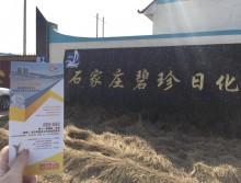 遛纸小分队在石家庄宣传沈阳展会 (33)