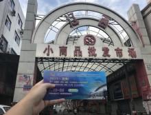 遛纸小分队在沈阳宣传沈阳展会 (60)