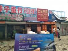遛纸小分队在辽宁本溪宣传沈阳展会 (8)
