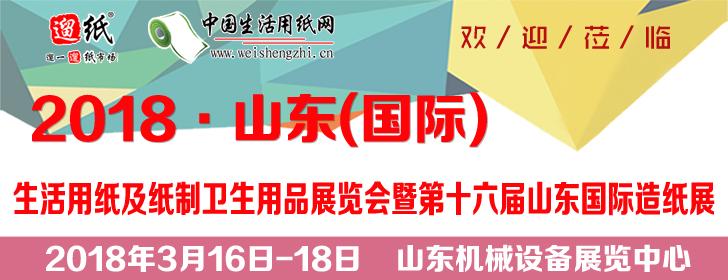 2018 山东(国际)生活用纸及纸制卫生用品展览会