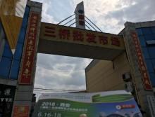 遛纸小分队在陕西安康宣传18年西安纸展会 (23)