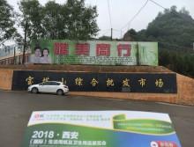 遛纸小分队在陕西延安宣传18年西安纸展会 (5)