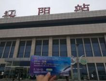 遛纸小分队在辽阳宣传18年沈阳展会 (15)
