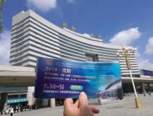 遛纸小分队在沈阳宣传18年沈阳纸展 (48)
